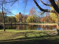 Beautiful day in Boston Common